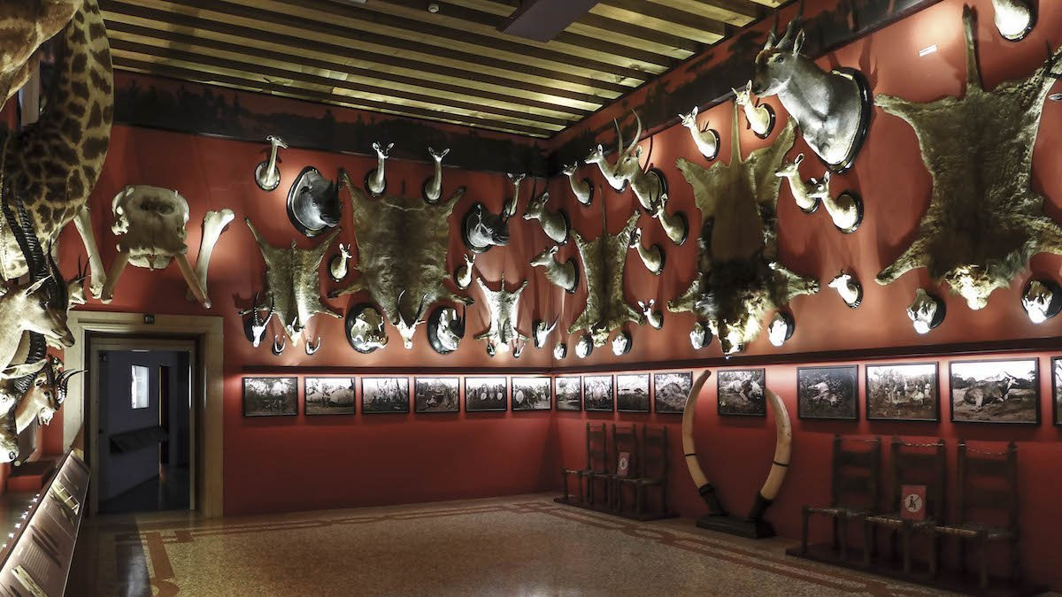 Le Wunderkammer e i leggendari esploratori veneti
