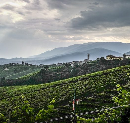 Prosecco by bike: a magical journey among charming wineries and traditional osterias