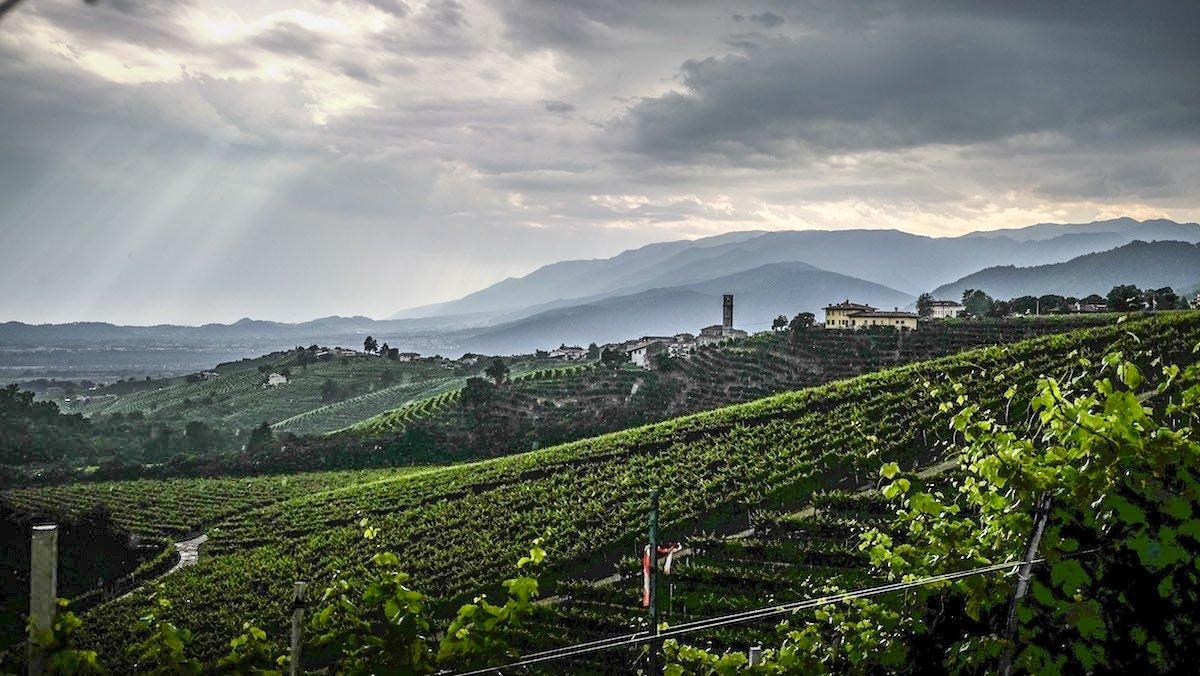 Prosecco in bicicletta: un magico tour tra degustazioni e locali storici - Veneto Secrets