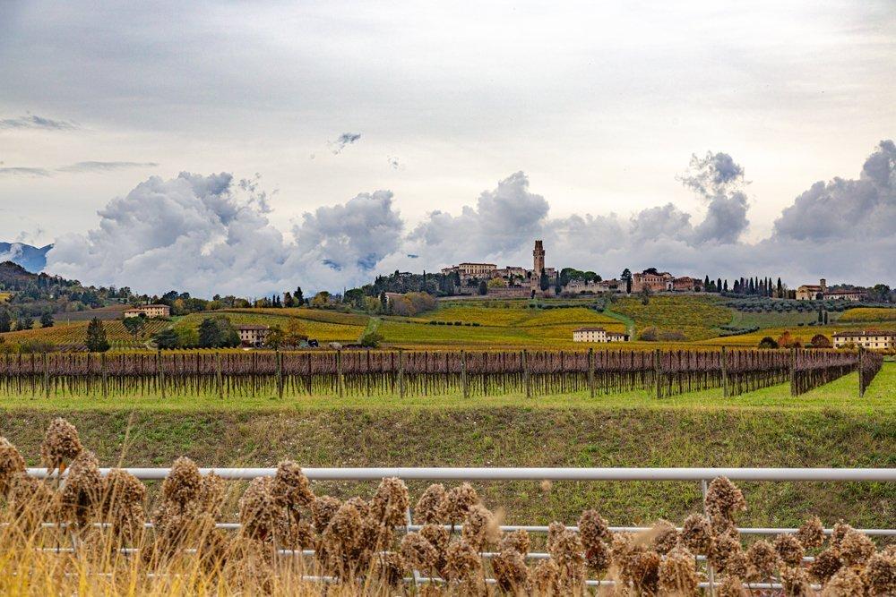 Cantina Borgoluce - Veneto Secrets
